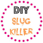 DIY Slug Killer