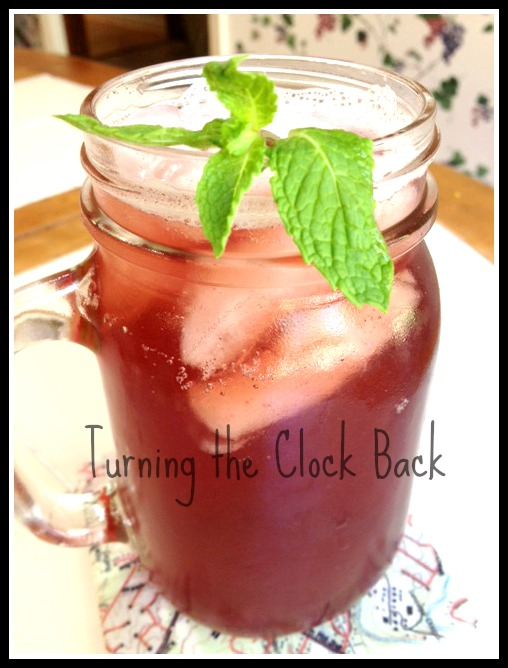 19 Amazing Alcohol-Free Beverage Recipes - Frugal Mom Eh!