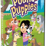 Pound Puppies: A Perfect Match DVD Review