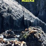 Don't Miss This in Alaska