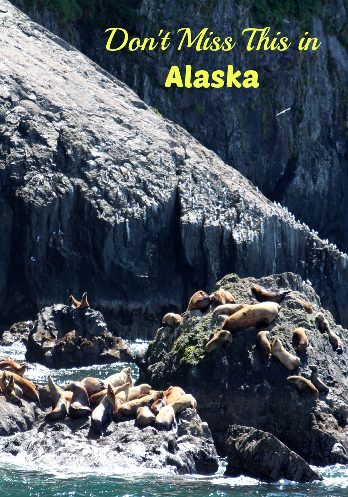 Don't Miss This in Alaska on your next Vacation.  This is a must read before you make your travel plans!