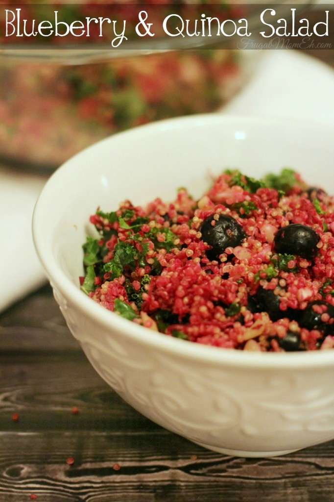 This Blueberry & Quinoa Salad with Flax Lemon Vinaigrette is perfect for serving to your family or gusts.  Its a fresh summer salad everyone will enjoy!