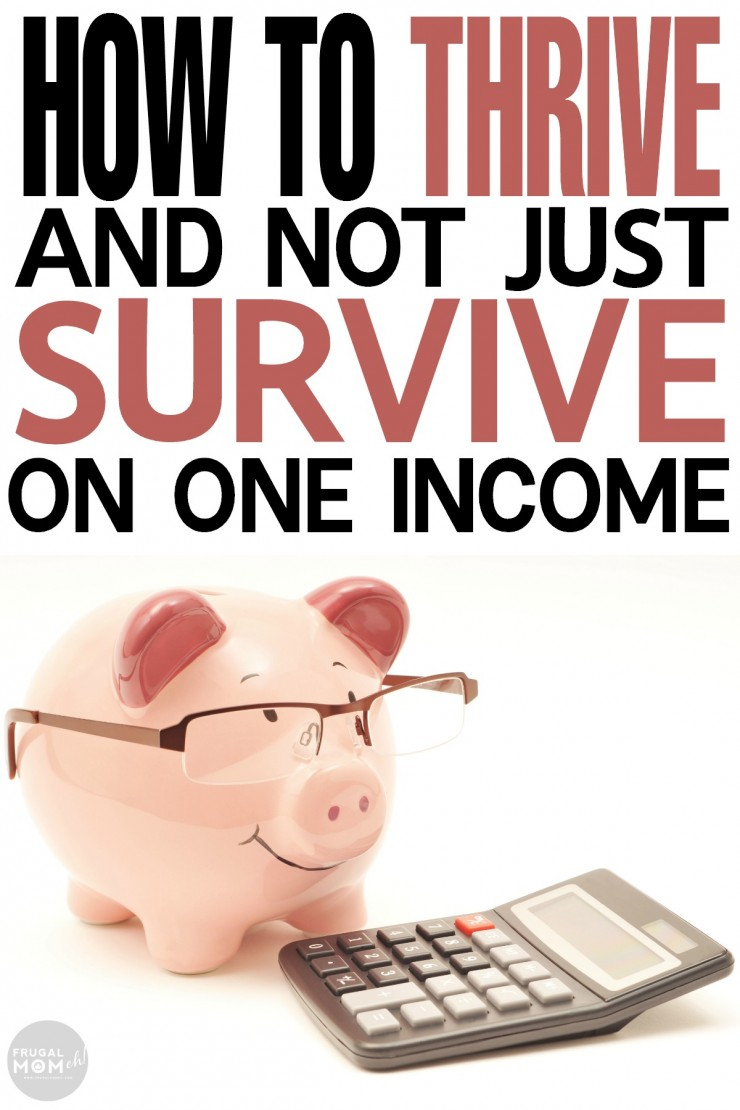 How to Thrive and Not Just Survive on ONE Income with these finance tips for easy frugal living.