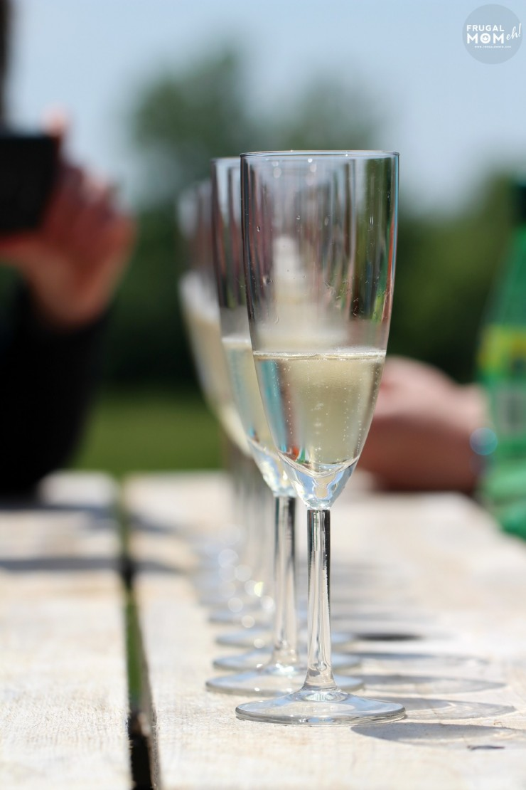 Wineries in Prince Edward County - 7 Must-See Attractions in Prince Edward County, Ontario - One of Canada's Top Tourist Destinations!