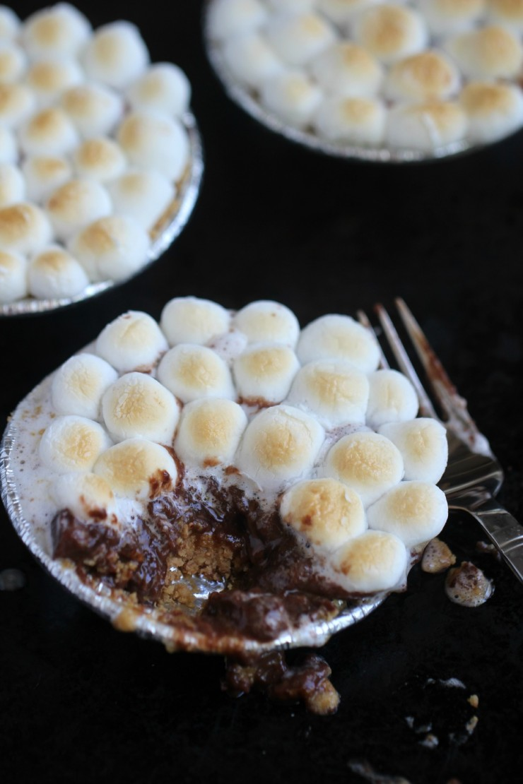 These Peanut Butter S'mores Tarts take a summer camping classic dessert recipe and turns it on its head for a fun summer treat!