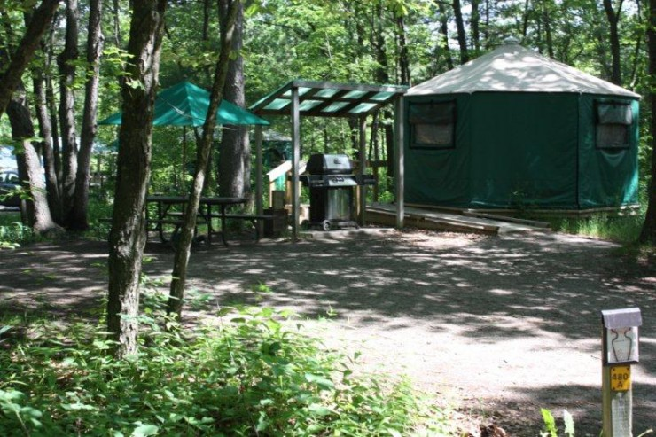 Pinery-Yurt-Campsite