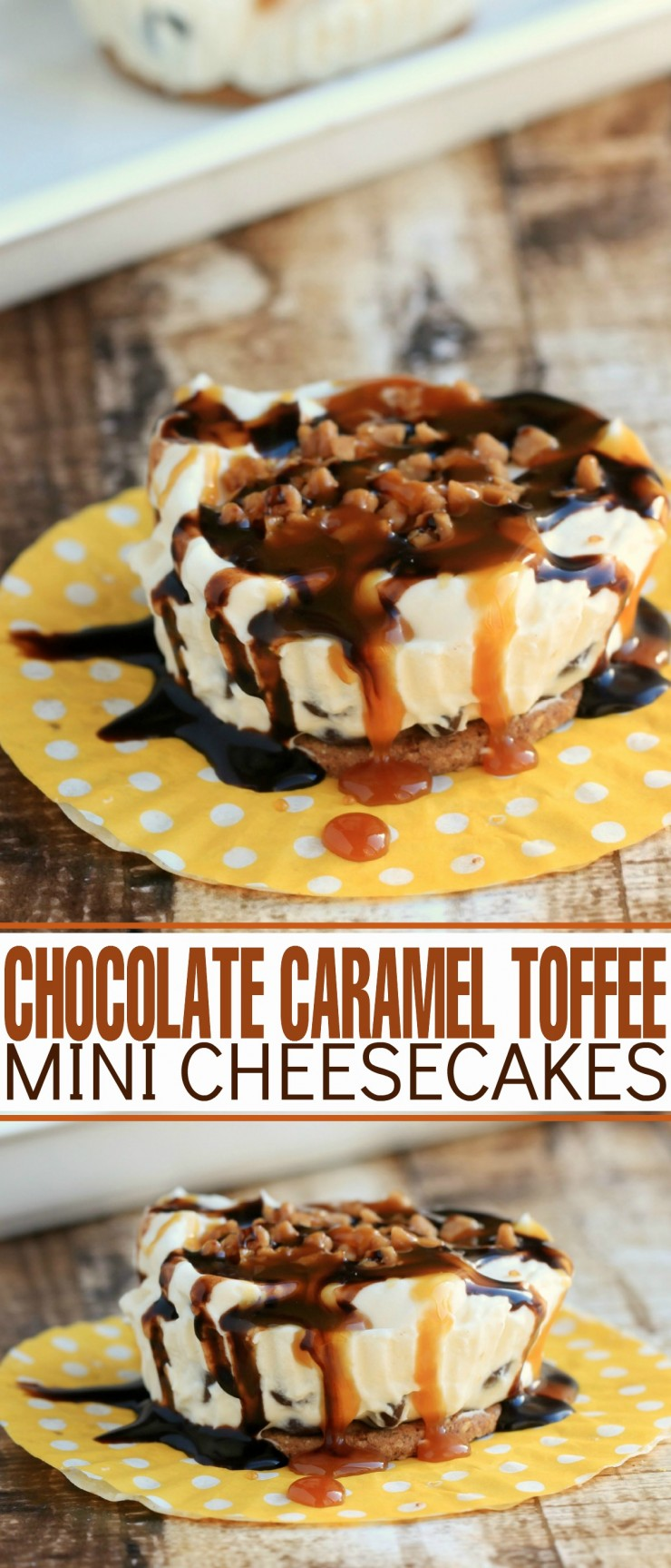 These Toffee Caramel Chocolate Mini Cheesecakes are an incredibly easy dessert to whip up any time!