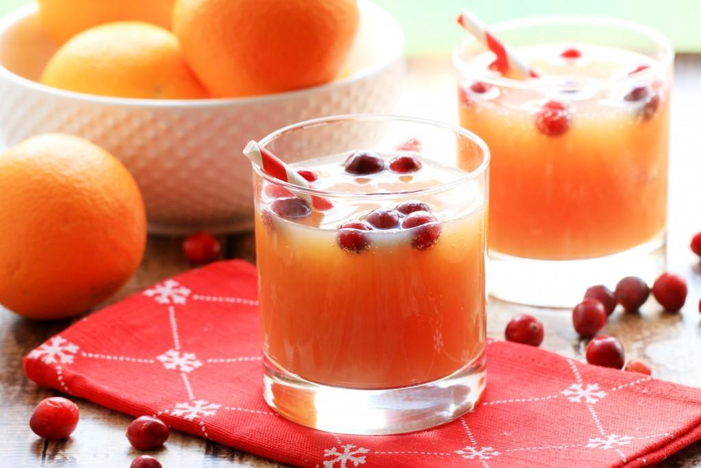 Non-Alcoholic Cranberry Orange Spritzer - Frugal Mom Eh!