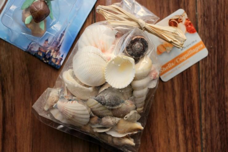 Materials-seashells