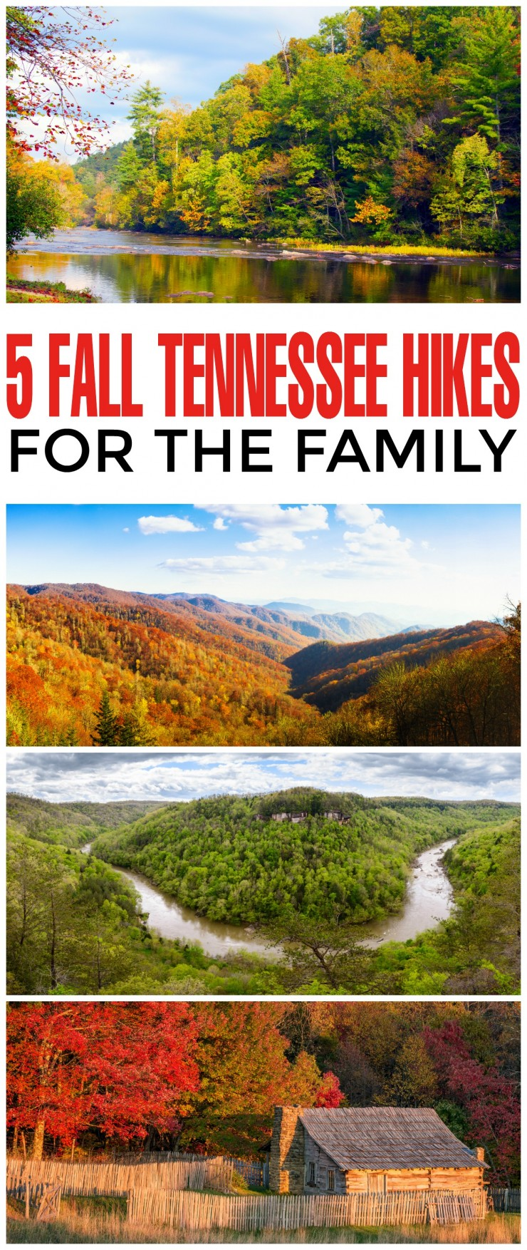 Hiking is one of the main activities in the state of Tennessee, with national parks and forests in every corner and area of the state. Here are 5 Fall Tennessee Hikes for the Family.