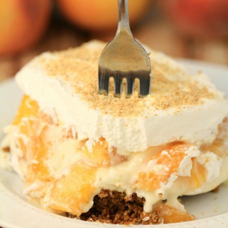 Peach Delight with Pecan Crust