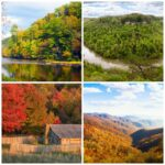 5 Fall Tennessee Hikes for the Family