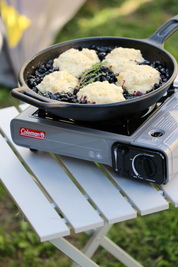 blueberry-grunt-camping