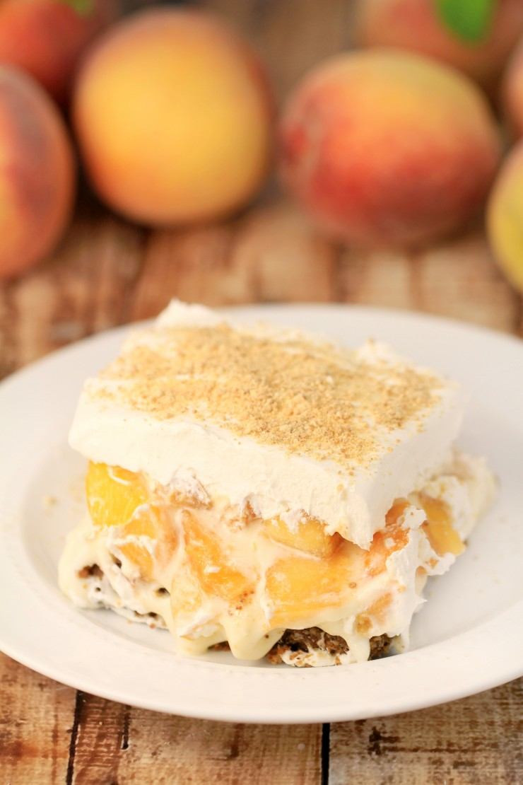 Peach Delight With Pecan Crust Frugal Mom Eh