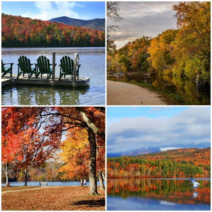 Fall Leaf Destinations in the Boston-Washington Corridor