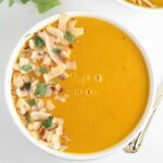 Thai Coconut Butternut Squash Soup + Kenmore Pro Heavy Duty Professional Blender Giveaway