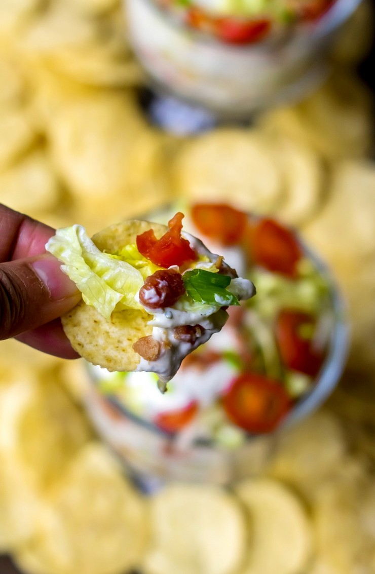 Fans of bacon, lettuce and tomato sandwiches will fall for this creamy, layered and easy BLT Dip recipe. Salty, crisp bacon and fresh tomatoes in a creamy dip make this BLT Dip recipe amazing. Perfect easy appetizer to serve at parties!