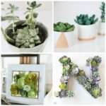 20 Ways to Decorate with Faux Succulents