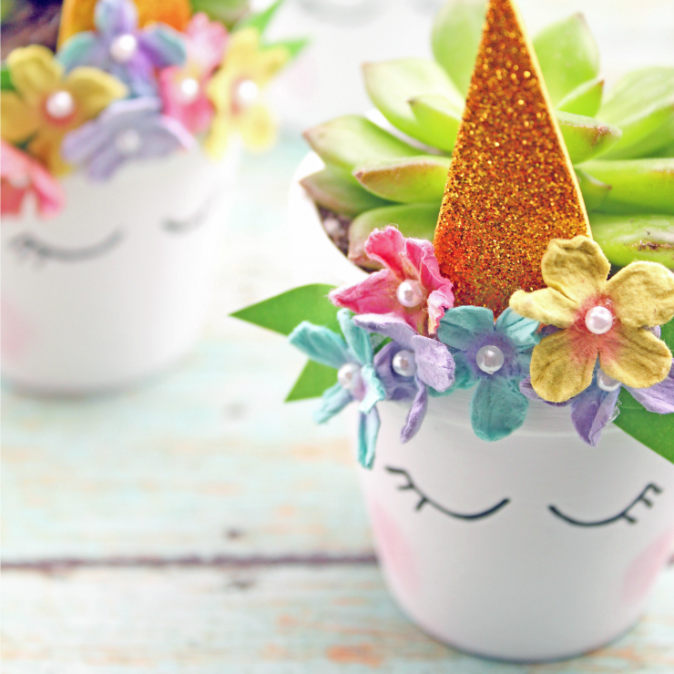 Unicorn Succulent Planter