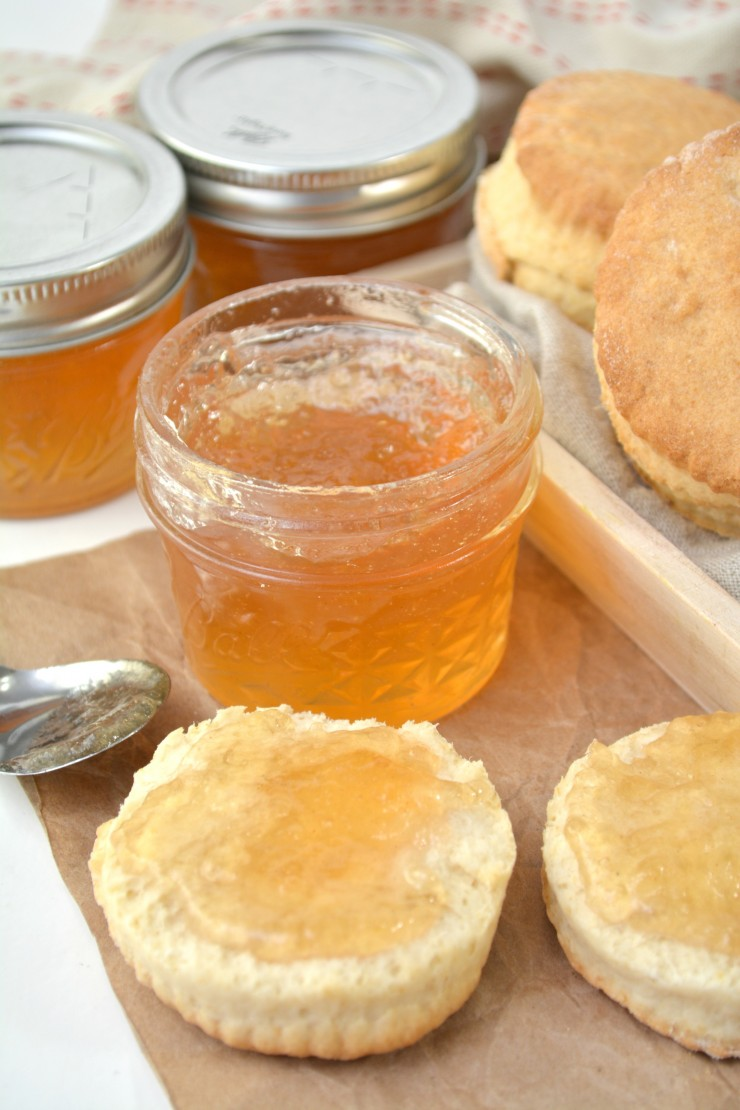 This homemade loquat jelly is a delicious addition to your pantry. With only a water bath canner needed, anyone can easily create this scrumptious jelly.