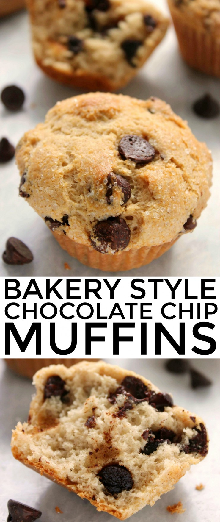 Paired with a hot cup of coffee, these bakery style chocolate chip muffins make for a delicious breakfast time treat. This is a muffin recipe that is sure to be a favourite with your family!