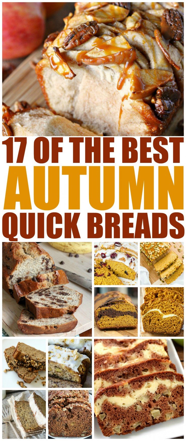 These are 17 of the Best Autumn Quick Bread recipes from popular blogs across the web. Perfect for a cool fall evening with a mug of coffee or even to serve at your thanksgiving dinner, these fall quick breads are sure to delight!