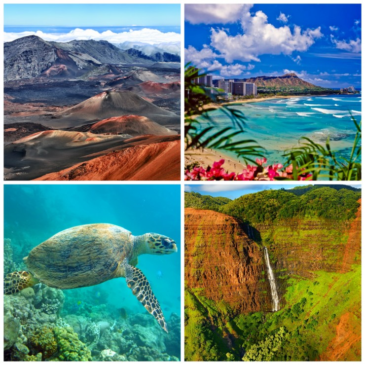 7 Must See Attractions in Hawaii