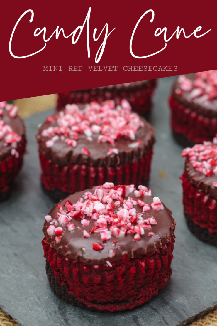 Luscious, thick and creamy mini Red Velvet Cheesecakes smothered in a smooth chocolate ganache and topped with candy cane. Perfect for any holiday party.