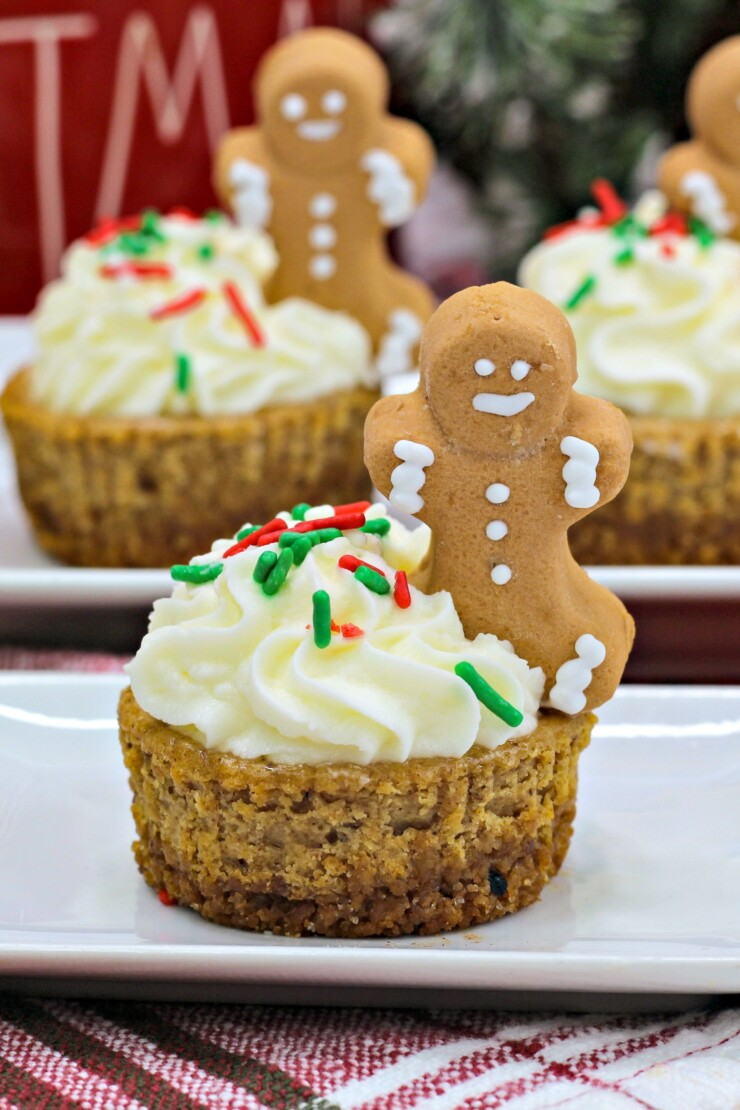 These mini gingerbread cheesecakes are the perfect holiday party dessert. Festive & spiced, they are sure to be a party favourite!