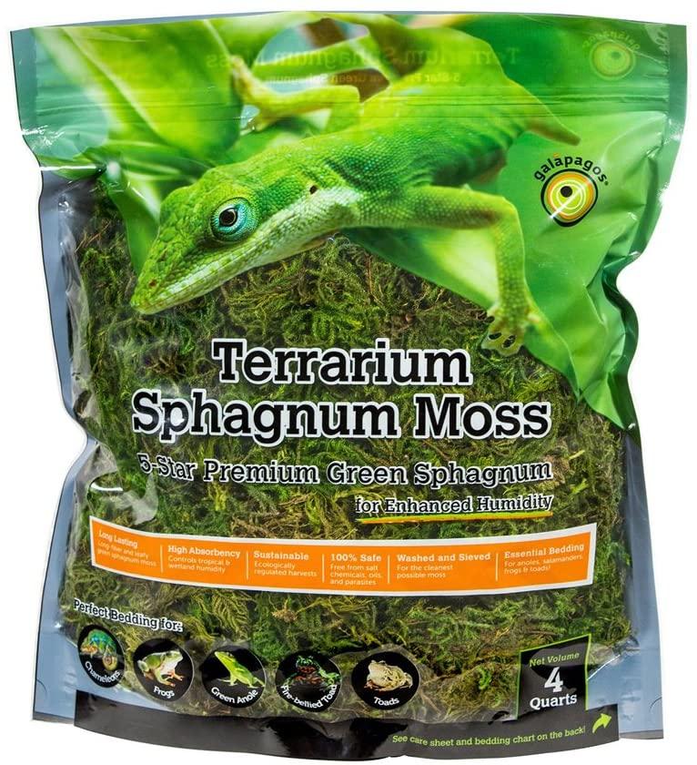 errarium Sphagnum Moss