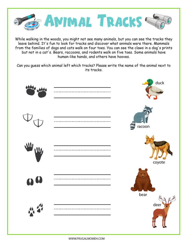 Free Printable animal tracks activity