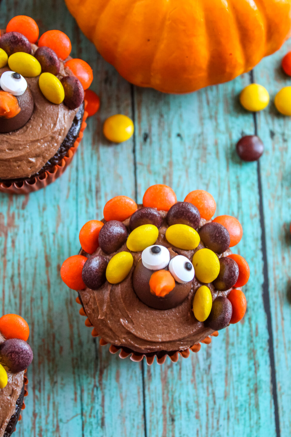 These fun and easy to make Thanksgiving turkey cupcakes will be a hit with kids of all ages. Learn how to decorate cupcakes like turkeys!